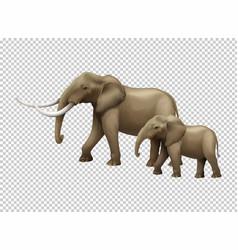 Wild elephants on transparent background vector