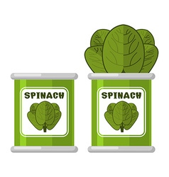 Spinach in tin useful herbs green lettuce leaves vector