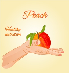 Peach in the palm of healthy nutrition vector