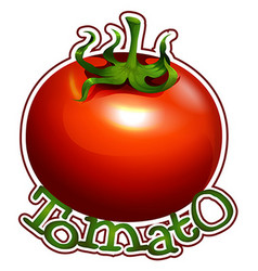 Font design with fresh tomato vector image vector image