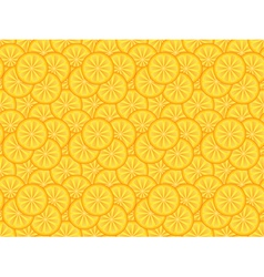 pattern made of orange slices vector image