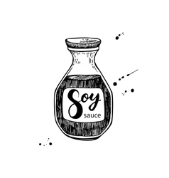 Soy sauce bottle Isolated food drawing vector image vector image