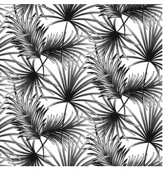 Grayscale palm leaves seamless pattern vector