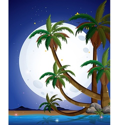 A beach with a bright fullmoon vector
