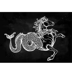 Hippocampus or Kelpie vector image vector image
