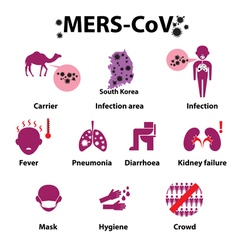 Middle east respiratory syndrome vector