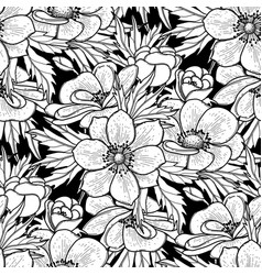 graphic anemones pattern vector image