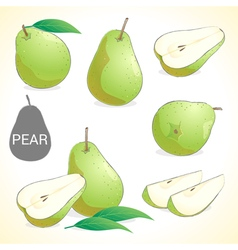 Set of pear fruit in various styles vector