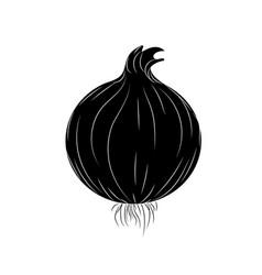 Contour fresh onion natural vegetable nutrition vector