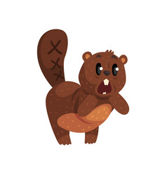 shocked little beaver standing isolated on white vector image vector image