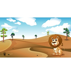 A lion sitting at the desert vector