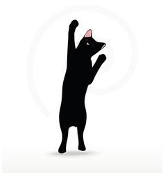 Cat silhouette in reach pose vector