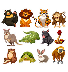 different kinds of jungle animals vector image