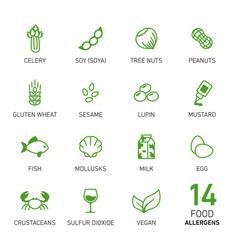 set of food allergens vector image vector image