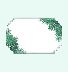 exotic tropical horizonal border frame corners vector image