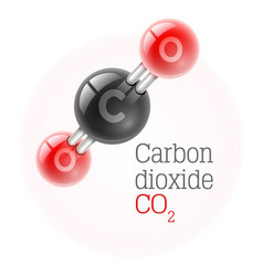 Chemical model of carbon vector