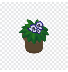 Isolated flower isometric flowerpot vector