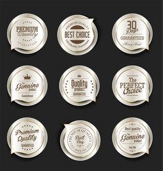 modern design gold and silver sale badges vector image