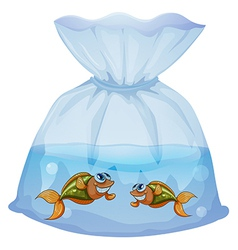 A pouch with fishes vector image