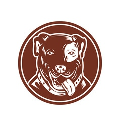 American Pit bull Terrier vector image vector image