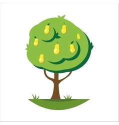 Cartoon pear tree vector image