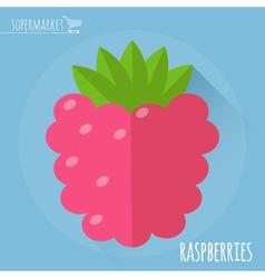 Raspberry icon vector