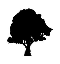 The black silhouette of a tree vector