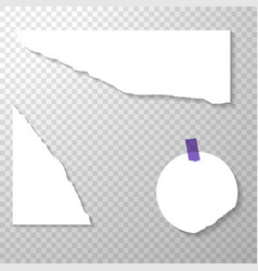 Torned off pieces of paper with purple stickers vector