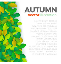 Autumn leaves banner vector