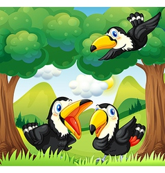 Three black birds at the forest vector