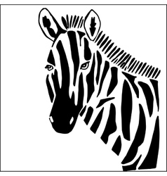 Zebra for coloring vector image