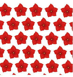 Flower geranium wallpaper decoration vector