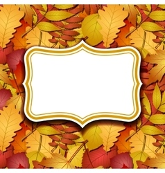 Frame labels on background with autumn leaves vector