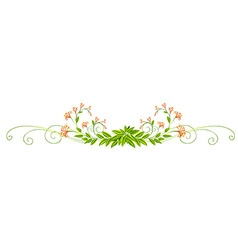 Plant design with leaves and flowers vector image vector image