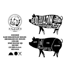pork cut vector image