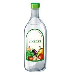 Bottle of vegetable vinegar vector