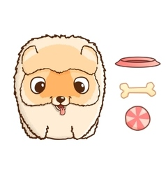 Cute pomeranian puppy vector