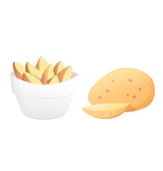 set potatoes isolated potato vector image vector image