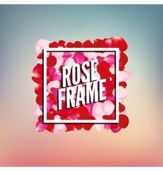 Rose petals border frame with place for text vector