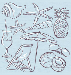 Set of summer symbols clams shells cocktail vector