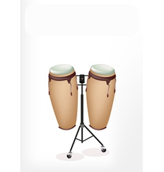 Beautiful congas with stand on white background vector
