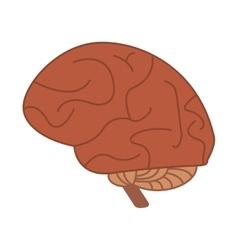 human brain idea creativity vector image vector image