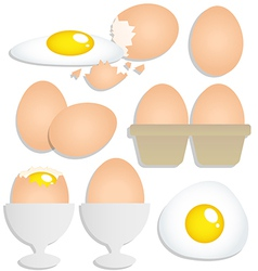 Set of eggs on white background vector image vector image