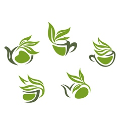 Symbols of green herbal tea vector image