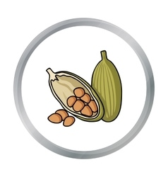 Cocoa fruit icon in cartoon style isolated on vector