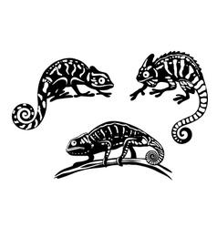 Chameleons set vector image