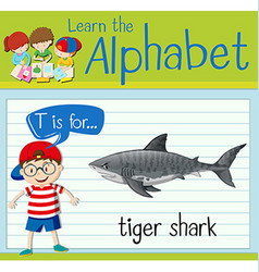 Flashcard letter T is for tiger shark vector image