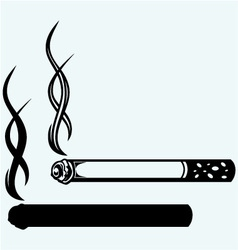 Cigarette burns vector image vector image