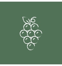Bunch of grapes icon drawn in chalk vector