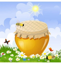 honey jar vector image